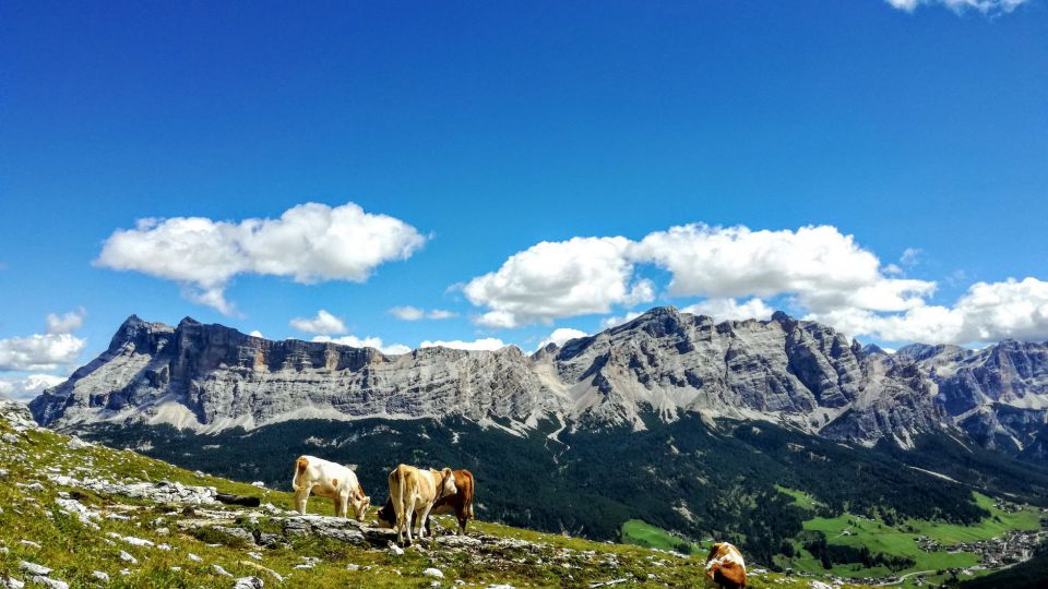 Image: Family holidays in South Tyrol
